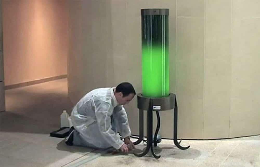 pierre-calleja-lampara-de-algas-verdes