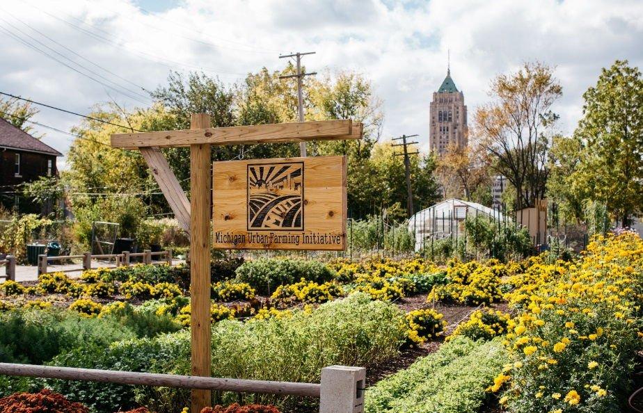 Michigan-urban-farming-iniciative