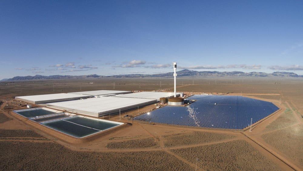 Sundrop-farms-panoramica