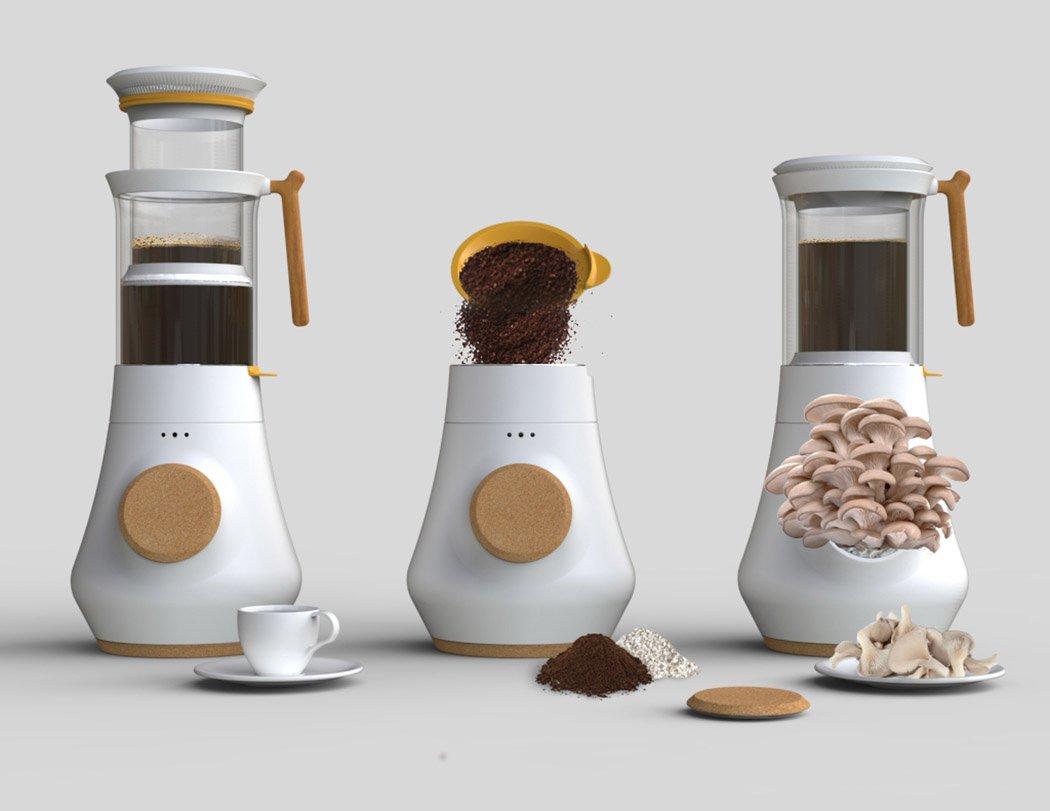 La cafetera HIFA cultiva setas con los restos del café