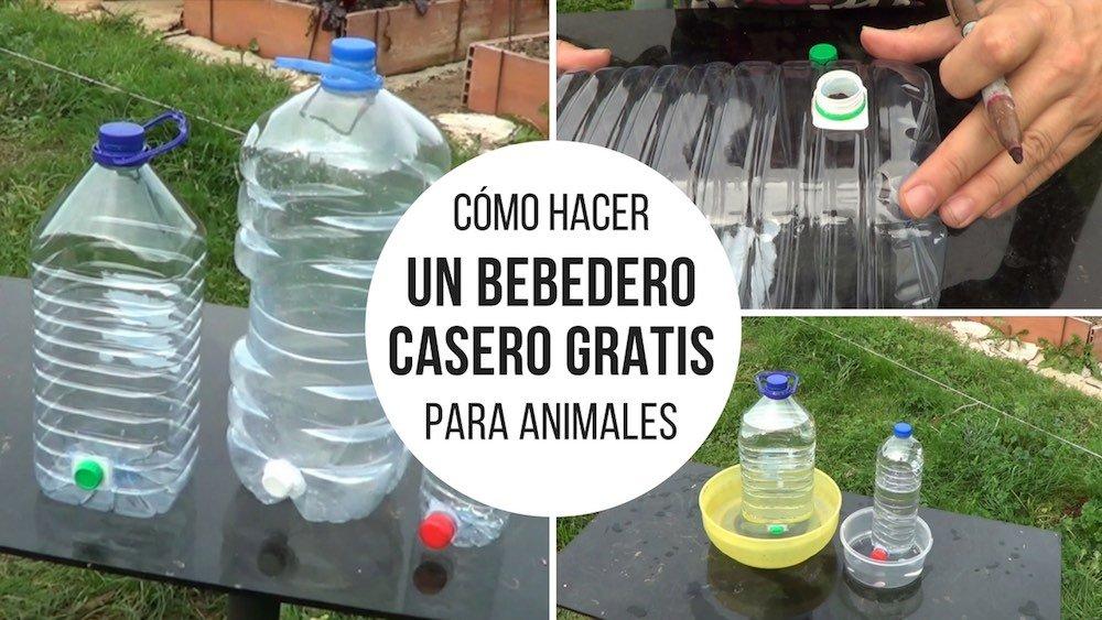 C%c3%b3mo-hacer-un-bebedero-casero-gratis-para-animales