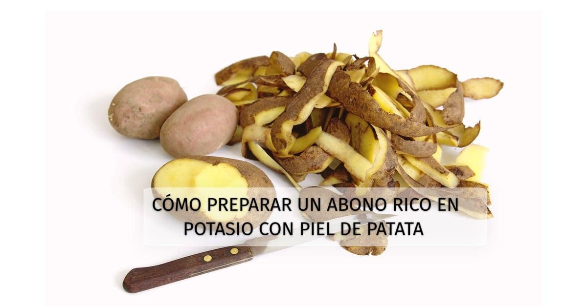 C%c3%b3mo-preparar-un-abono-rico-en-potasio-con-piel-de-patata