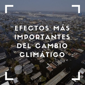 Efectos más importantes del cambio climático.