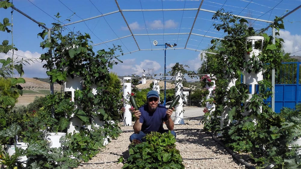 Macetas-de-new-garden-posibilidades