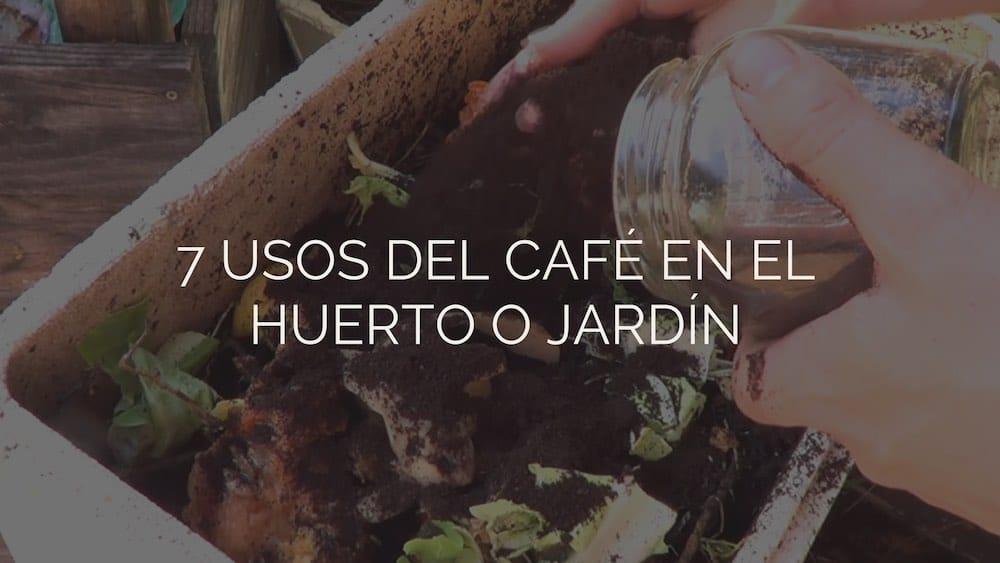 7 usos del café en el huerto o jardín