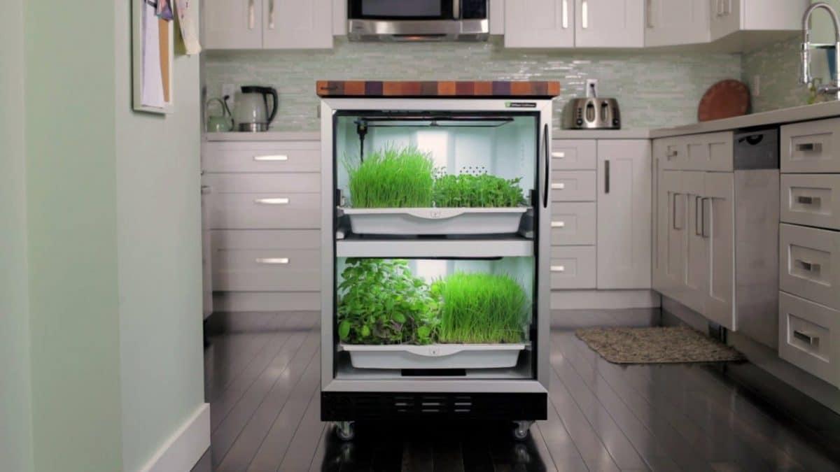Urban-cultivator-cocina2