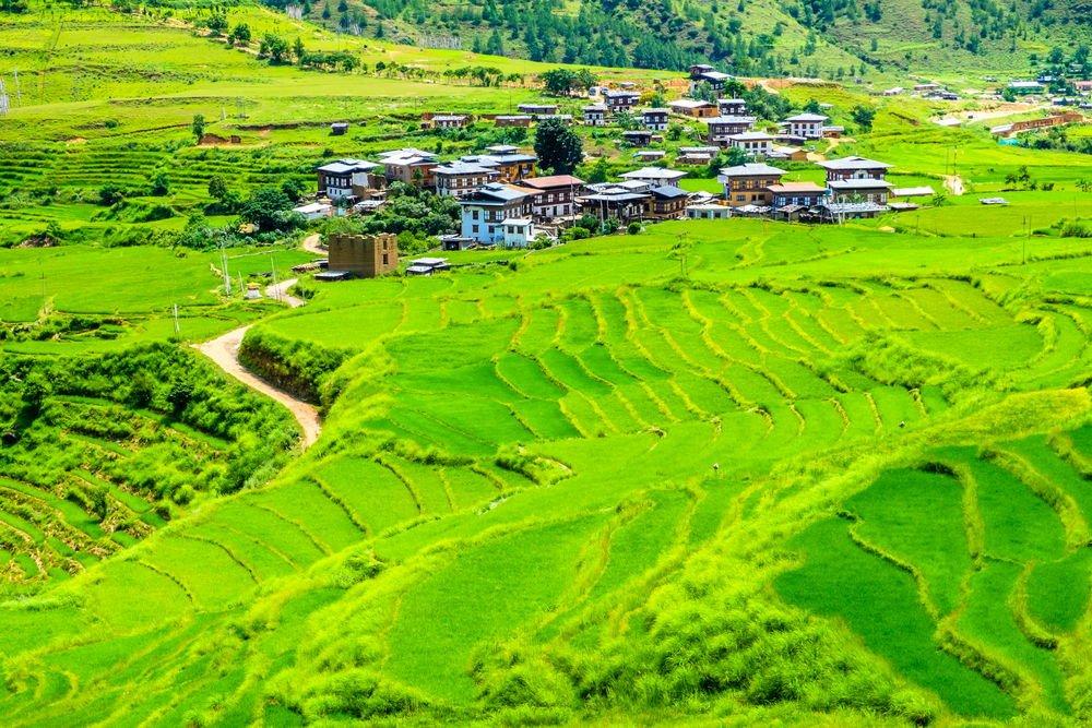 Bután y Dinamarca, en liza para convertirse en el primer país 100% orgánico del mundo