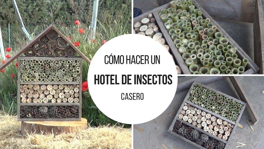Cómo hacer un hotel de insectos en tu huerto
