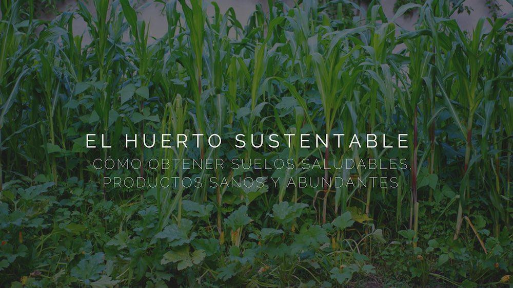 Huerto-sustentable