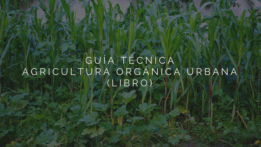 Gu%c3%ada-t%c3%a9cnica-de-la-agricultura-org%c3%a1nica-urbana