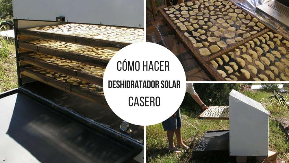 Deshidratador-solar-casero4