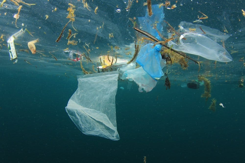 Los plásticos de un solo uso tienen los días contados en Costa Rica