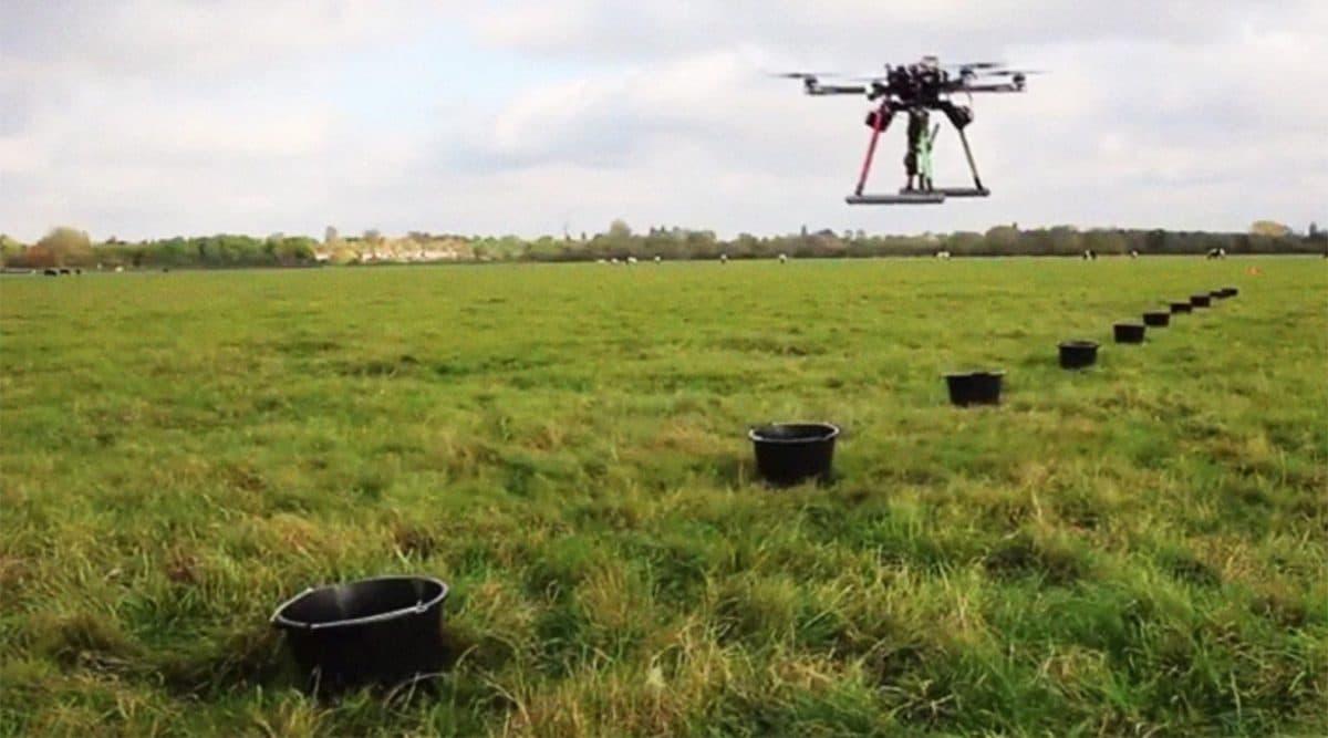 Drones están plantando un bosque entero desde el cielo