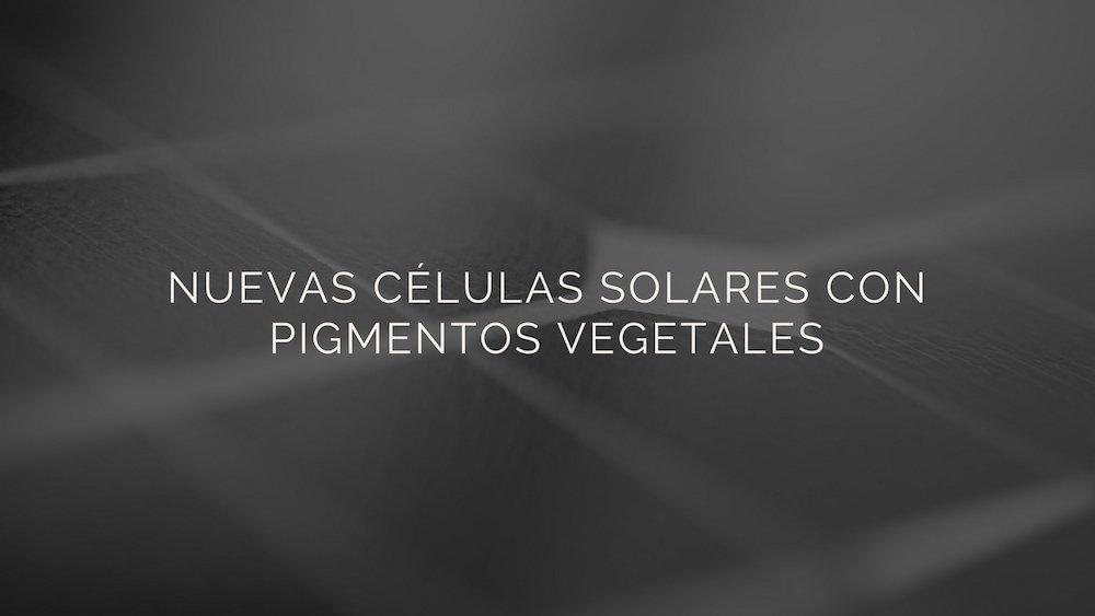 C%c3%a9lulas-solares-con-pigmentos-vegetales