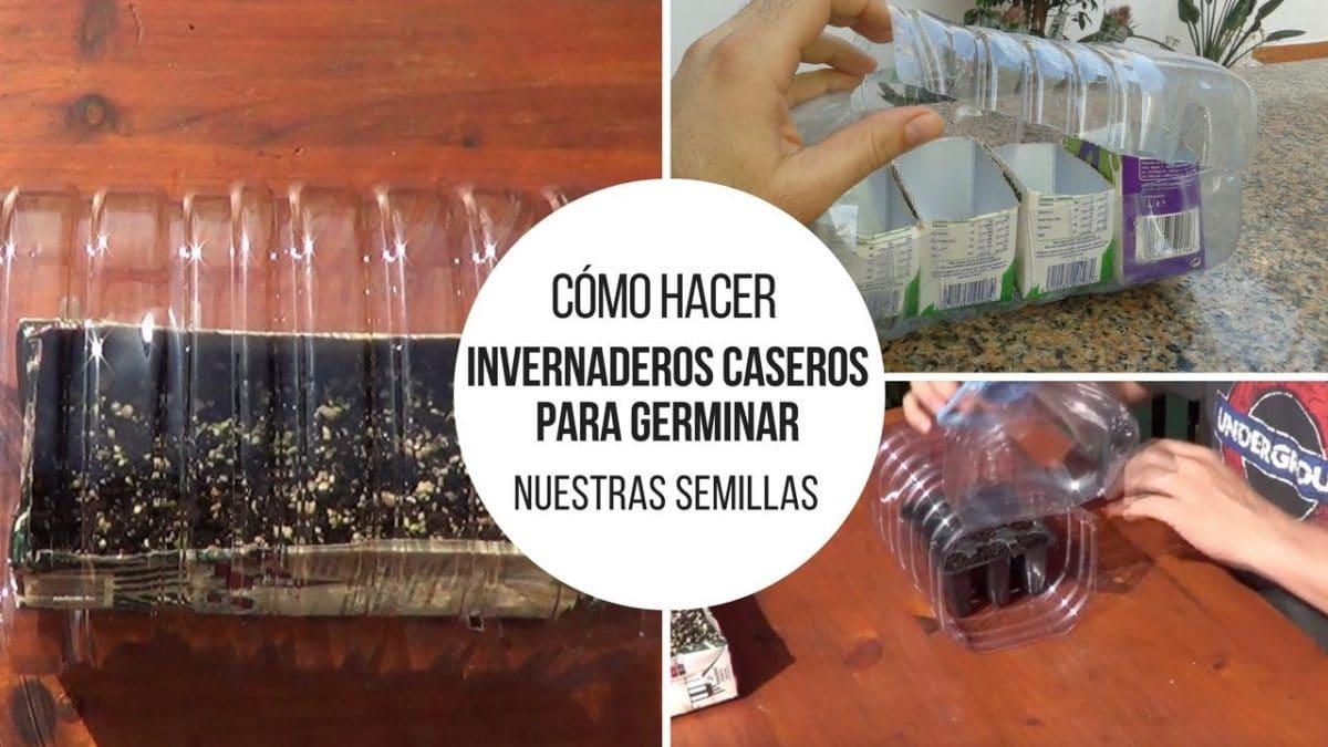 Invernaderos-caseros-germinar-semillas