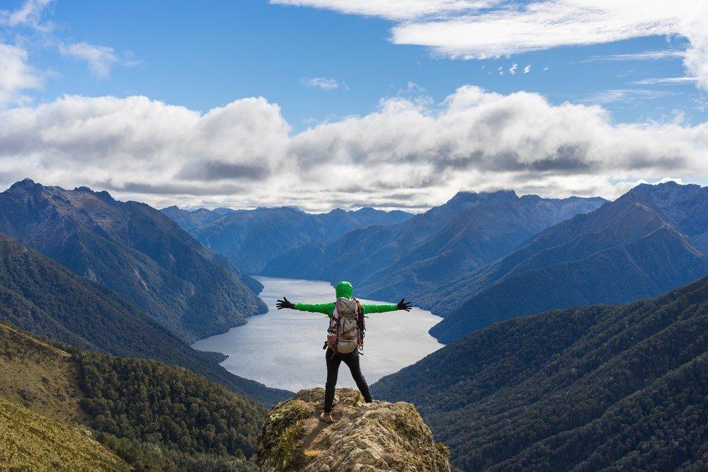 Nueva Zelanda plantará 100 millones de árboles cada año