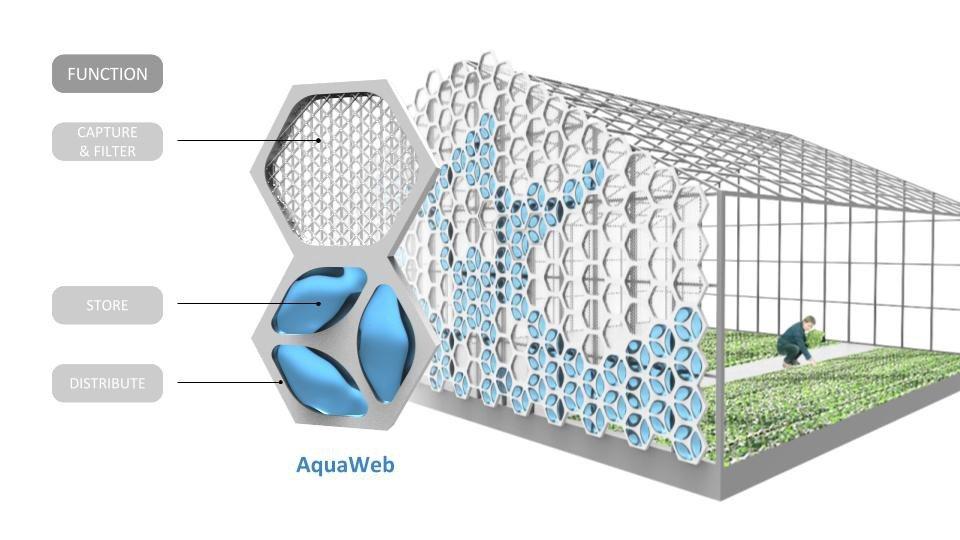 Aquaweb