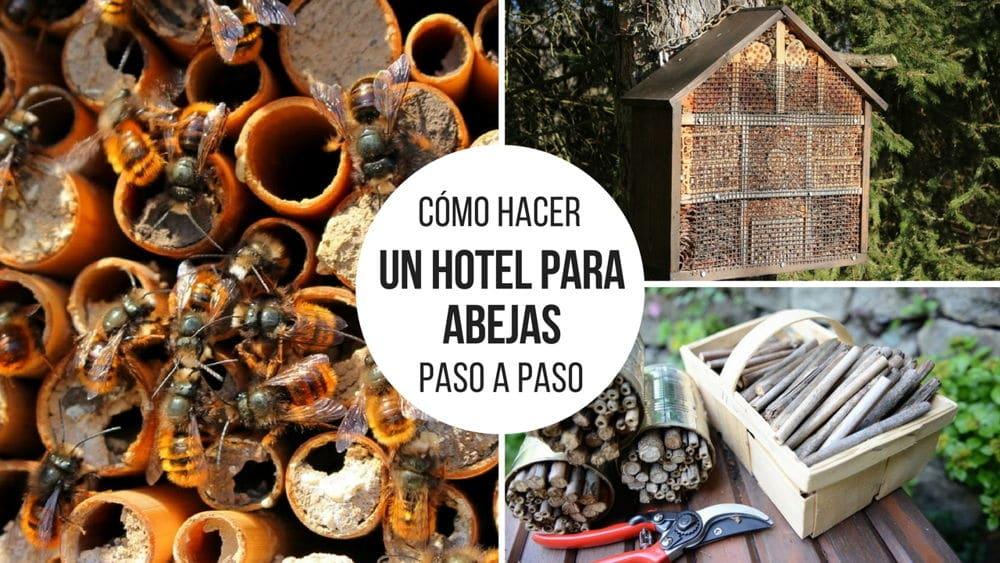 Cómo hacer un hotel para proteger a las abejas paso a paso