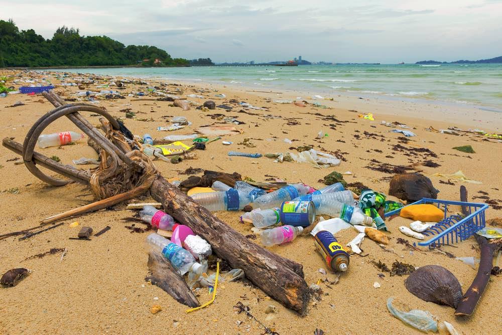 Contaminacion-marina