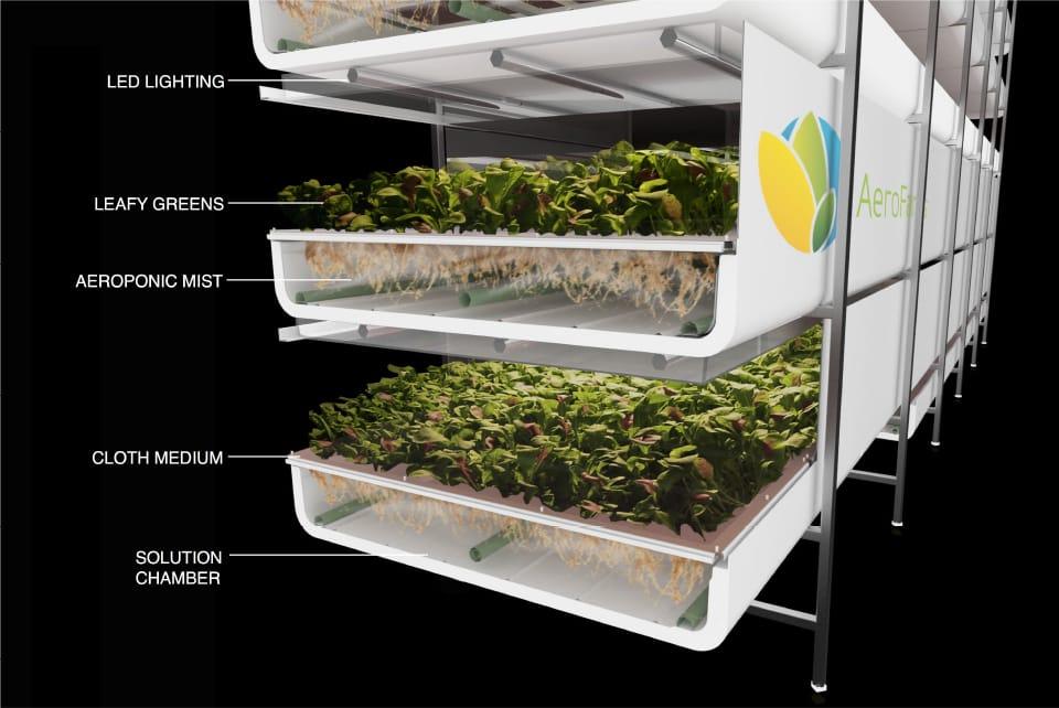 Funcionamiento sistema de cultivo vertical sin tierra y con un 95% menos de agua
