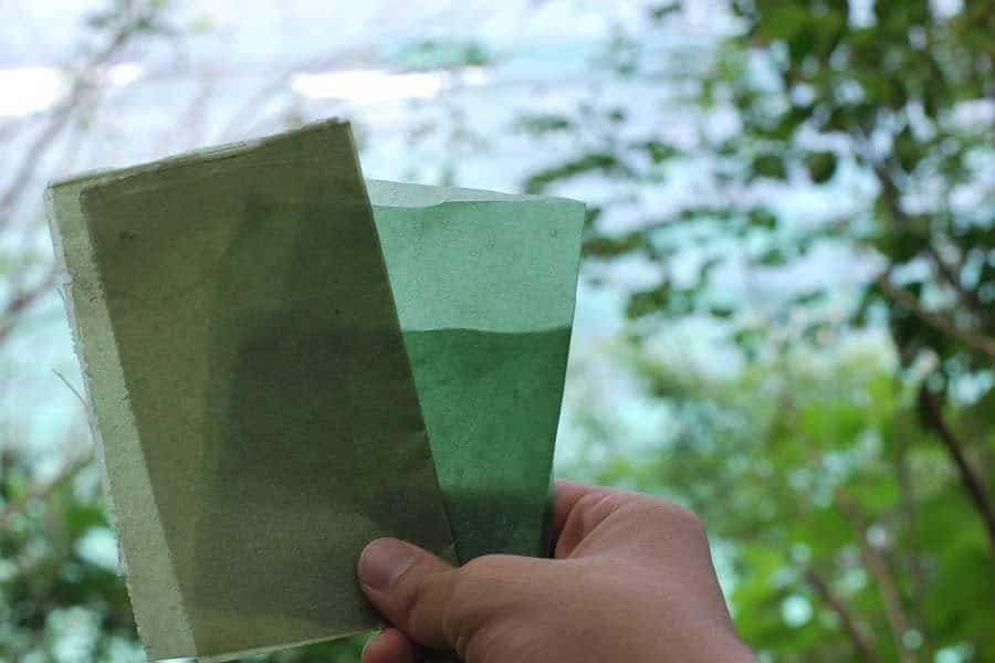 Envoltorio-biodegradable-indonesia