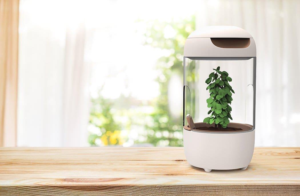Fytó, una compostadora inteligente para que los niños aprendan a compostar