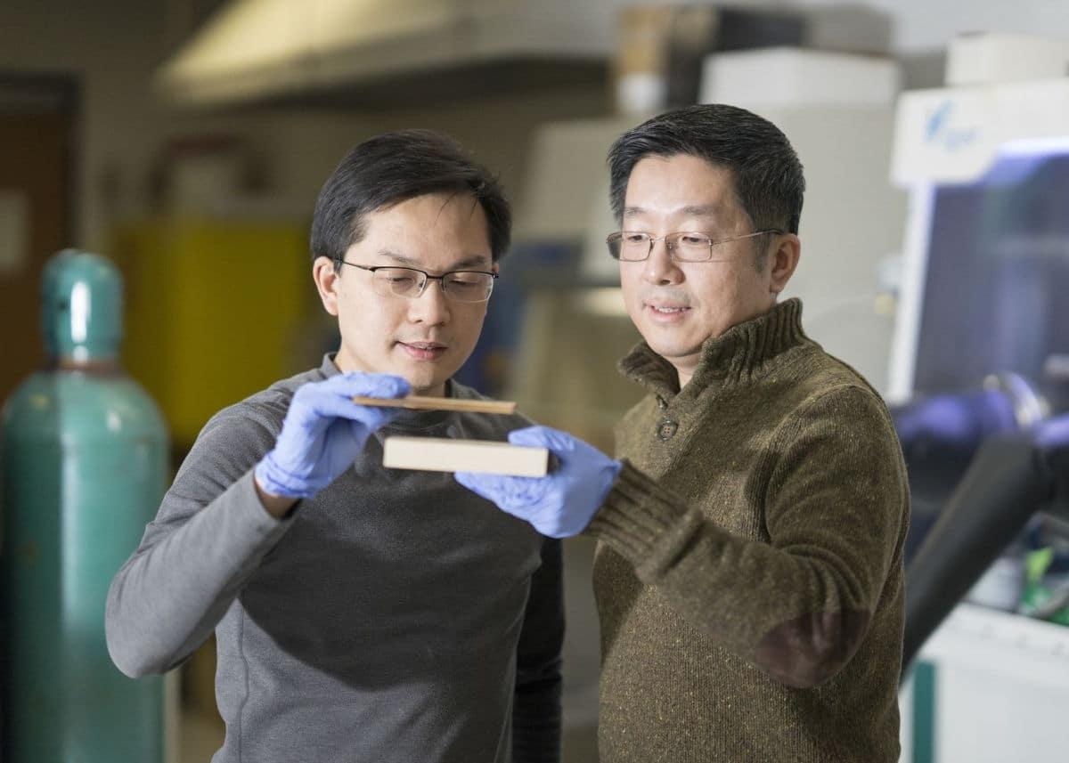 Una nueva madera a prueba de balas y fuerte como el acero permitiría su uso incluso en aviones