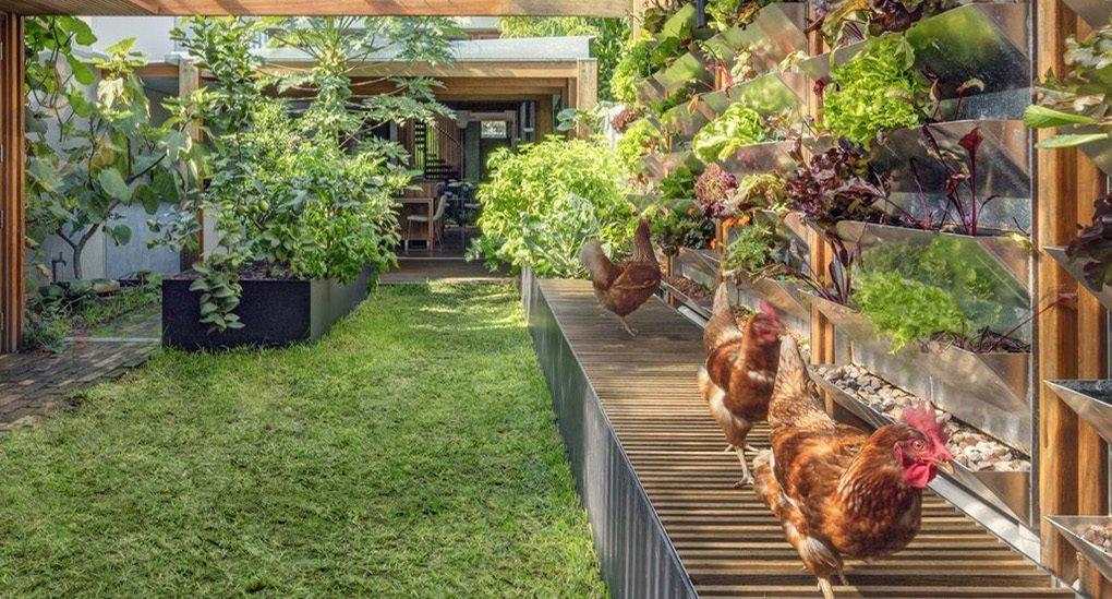 Esta casa australiana autosuficiente cosecha sus propios alimentos, energía y agua