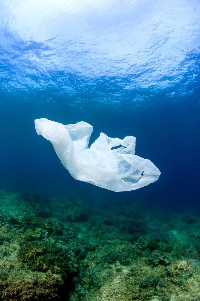 El Gobernador de Nueva York anuncia ley para prohibir las bolsas de plástico