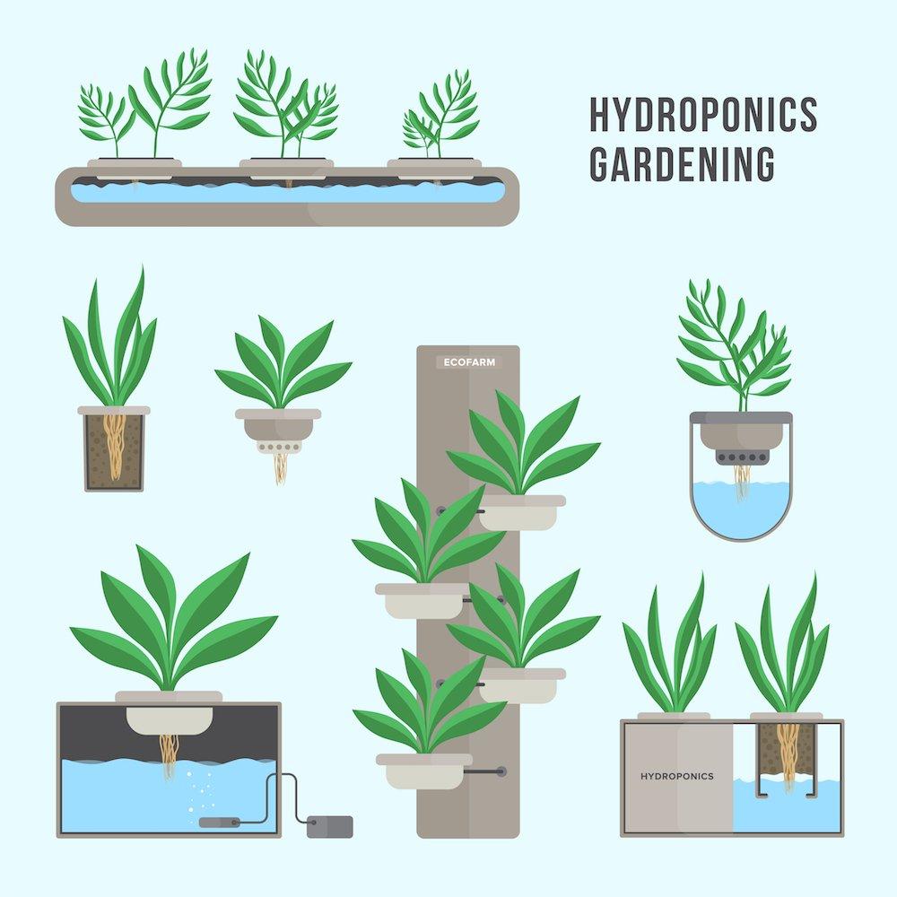 Cultivo hidrop nico qu c mo cu ndo qui n d nde y por qu - Jardin hidroponico ...