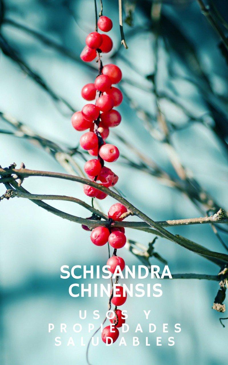 Propiedades, beneficios y usos de Schisandra chinensis