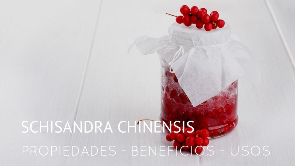 Schisandra-chinensis