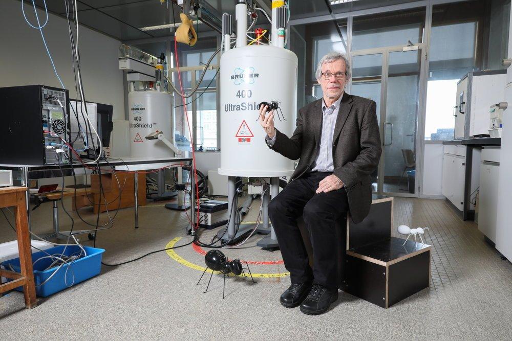 Diseñan la primera unidad viable para producir electricidad a partir de ácido fórmico