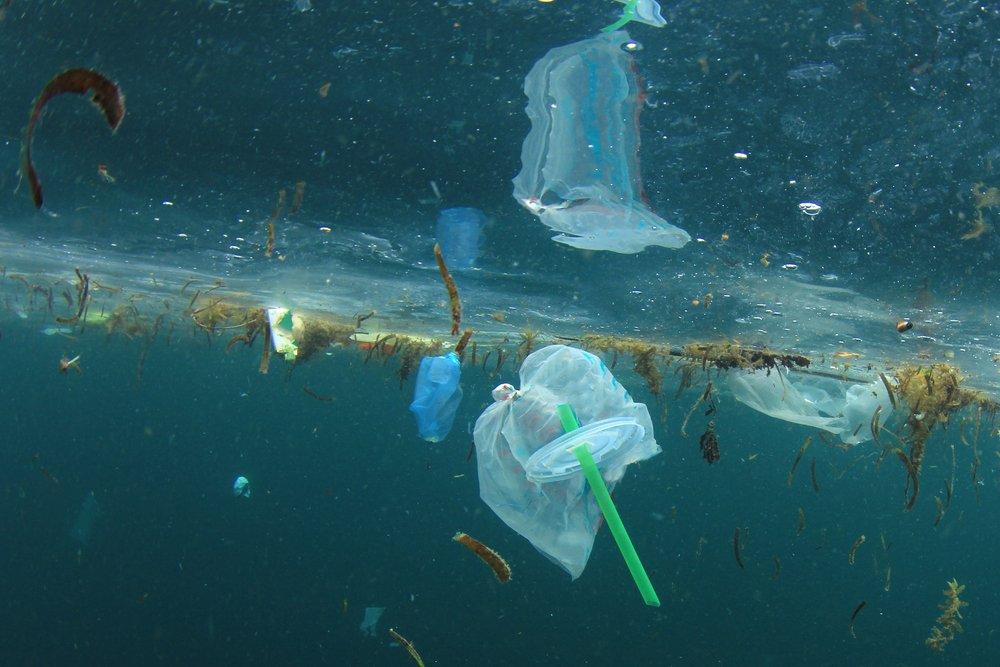 El Reino Unido quiere prohibir la venta de pajitas de plástico para hacer frente a la contaminación del océanos