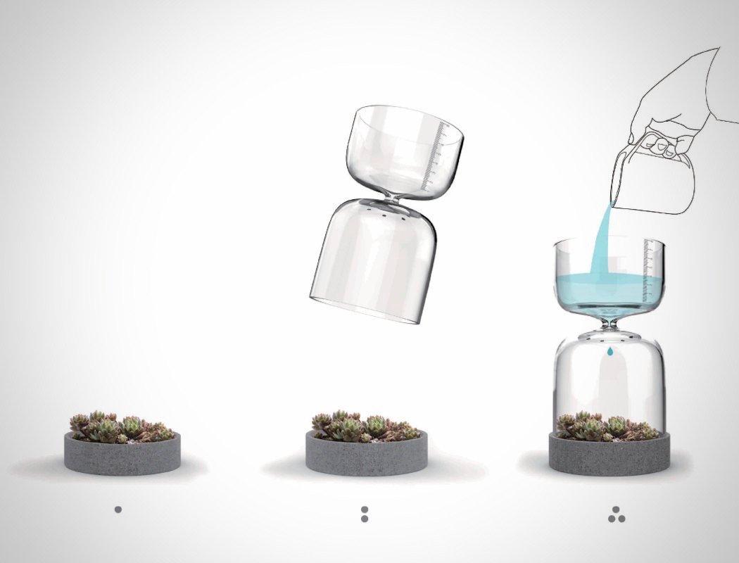 Una sencilla idea para que no le falte agua a tus plantas