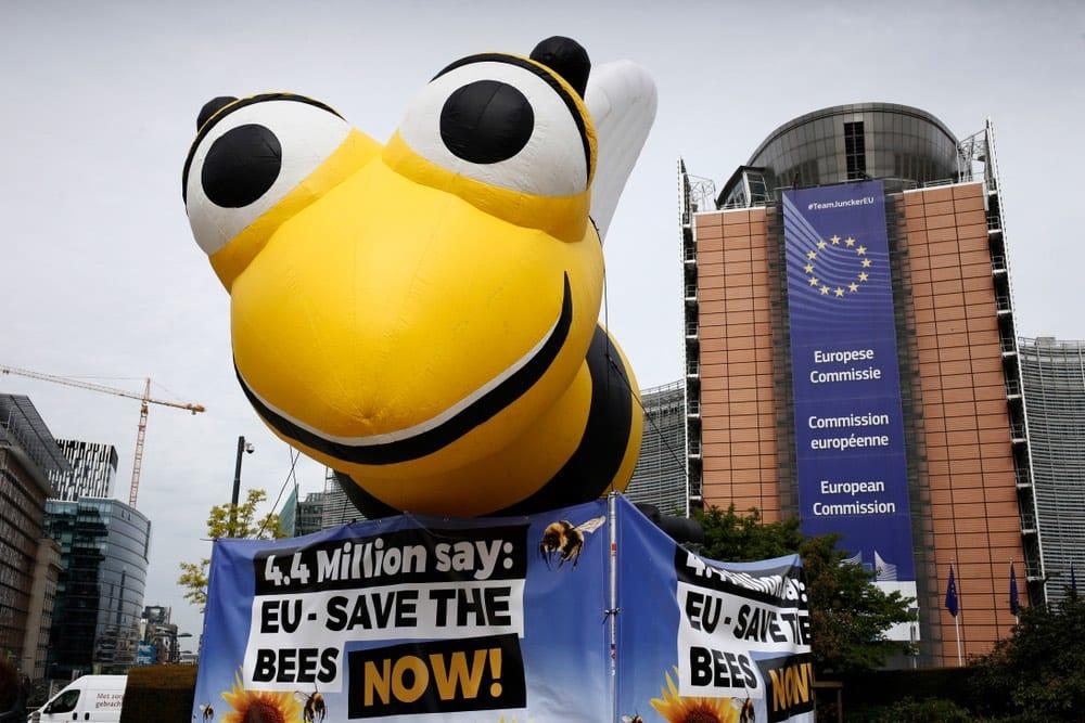La Unión Europea aprueba normativa contra pesticidas 'mata abejas'