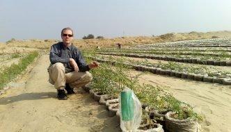 La innovación que convierte la arena del desierto en tierra de cultivo