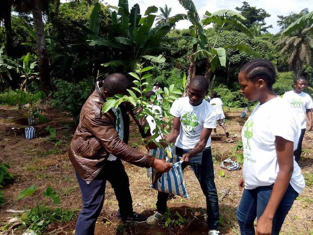 Plant-for-the-planet-camerun