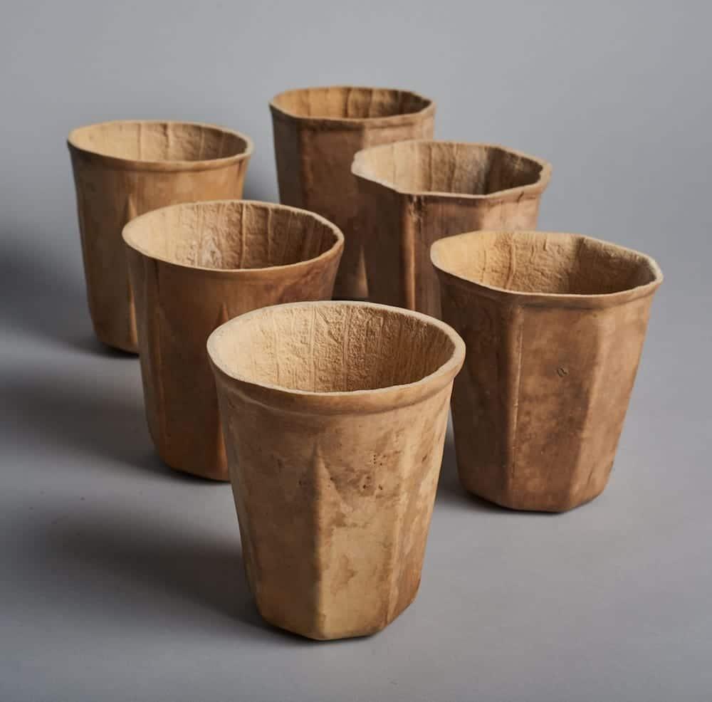 HyO-Cup, calabazas de cosecha propia para producir tazas de café biodegradables