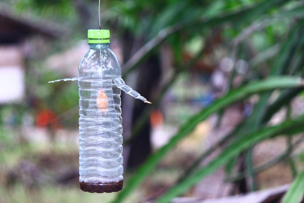 Trampa anti-moscas con botella de plástico.