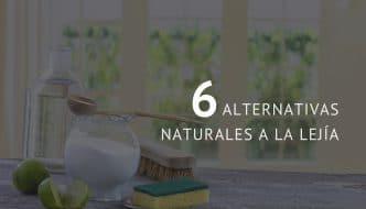 6 alternativas naturales a la lejía para una limpieza más ecológica