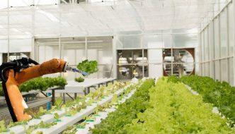 Esta granja autónoma está diseñada para producir alimentos sin trabajadores humanos