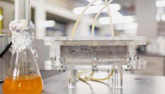 """""""Oro líquido"""": estudiantes fabrican el primer ladrillo del mundo a partir de orina humana"""