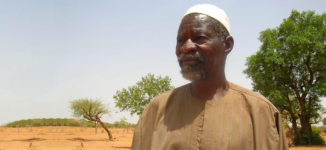 Resultado de imagen para Yacouba Sawadogo  bosque