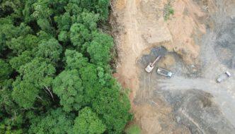 La deforestación devora la Amazonia: +278% en julio