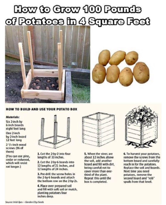 Cómo hacer una caja para el cultivo casero de patatas