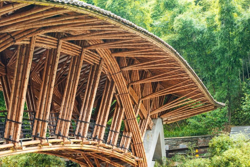 Manual online para construir con bambú