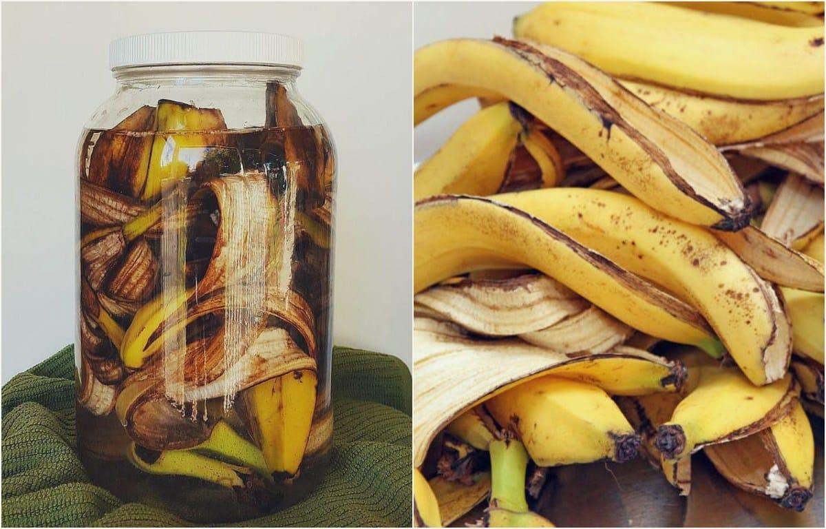 Ferlilizante-cascara-banana