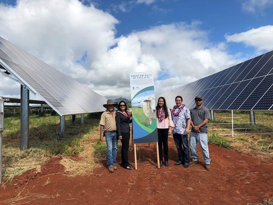 Kauai-island-utility-cooperative