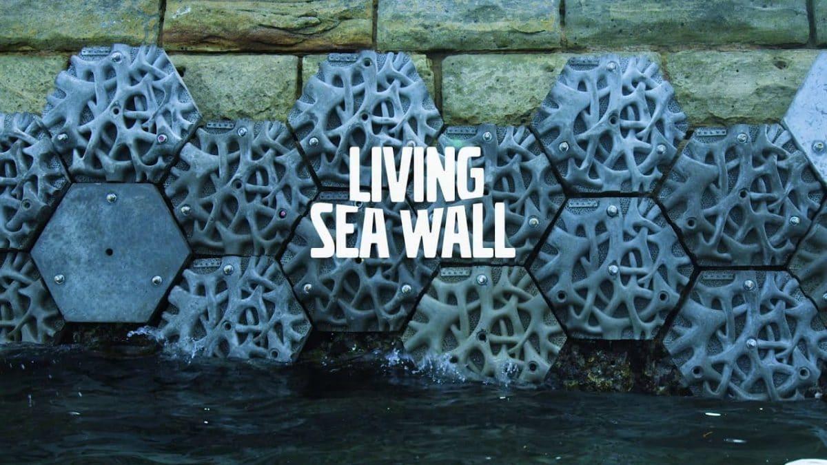 Proyecto-living-seawall
